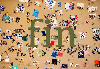 Fin2012summer